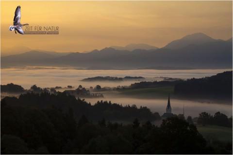 Zeit Für Natur – Homepage von Michael Neukum ist online!